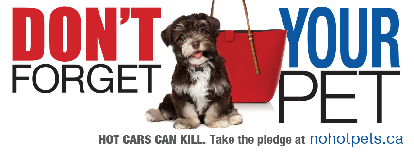 Don't forget your pet. Hot cars can kill. Take the pledge at nohotpets.ca.